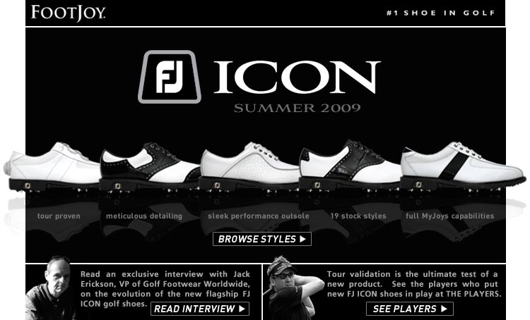 FJ ICON - Summer 2009 body